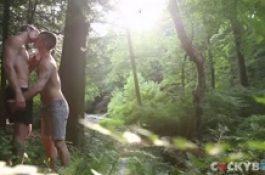 Ballade dans les bois prend une tournure inattendue