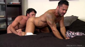 Etalons gays tout en muscle