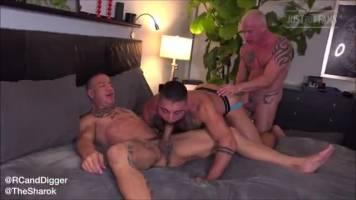 Trio de mâles machos