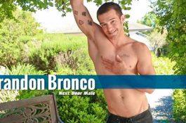 Brandon Bronco – Modèle musclé
